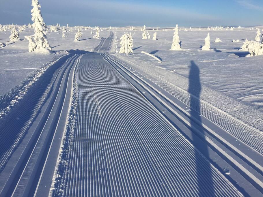 249 km oppkjørte skiløyper for langrenn.