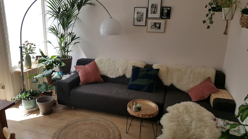 Spacious light appartement near park and market.