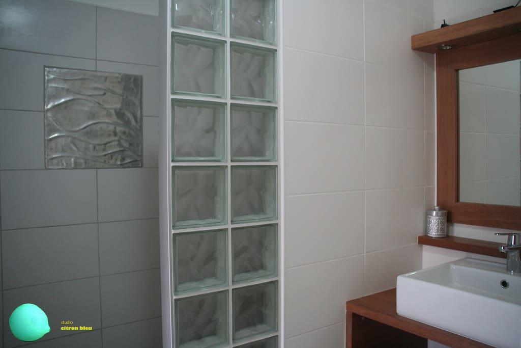 Salle de bain avec douche a l'italienne