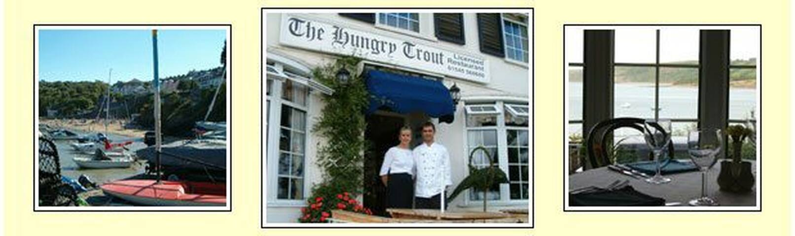 The Hungry Trout Guest House - New Quay - Bed & Breakfast