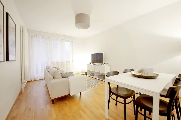 1 bedroom Apt., fully furnished, modern, central