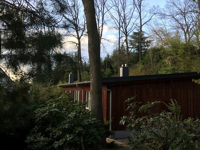 """Gästewohnung """"Am Lutherweg"""" - Döbeln - Departamento"""