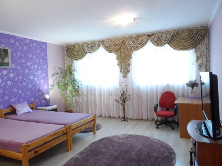 Уютная комната класса люкс на набережной Ужгорода