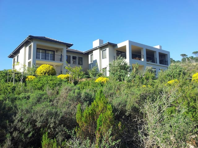 THE FYNBOS SUITE