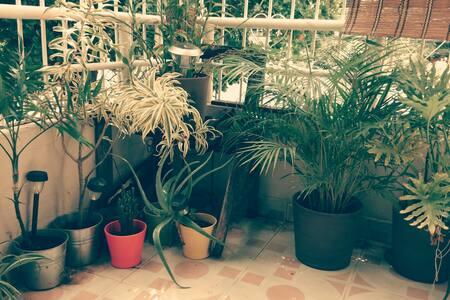 Casa/Galería Mamá Tingó (Room 4)