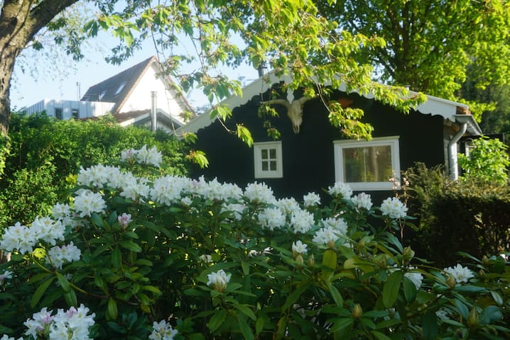 Cottage in secluded garden near centre Rotterdam