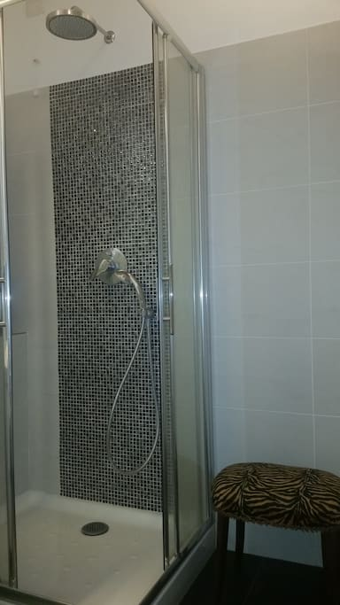 doccia in condivisione/shared shower with host