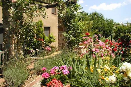 Il Rifugio B&B in the Olive Covered Hills of Lucca - Capannori