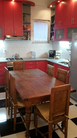Spacious, recently renovated flat - Beograd - Apartment