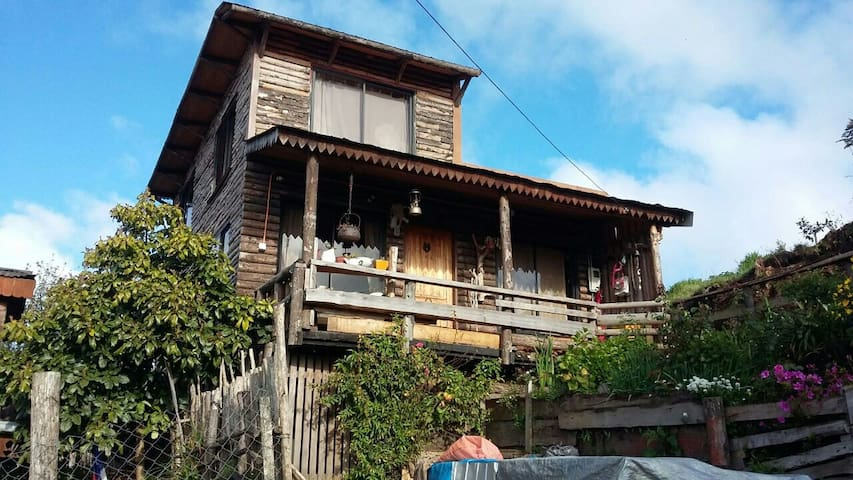 Casa madera nativa con vista al mar