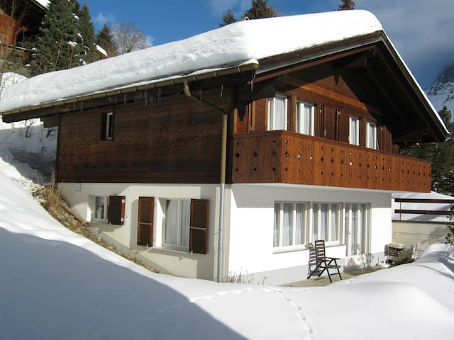 Chalet Egghus - Grindelwald - Rumah