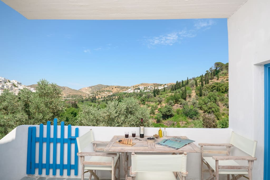 Panoramic view to valley with olive trees and other fruit trees