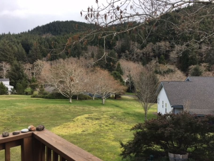 View to Mountains from Porch