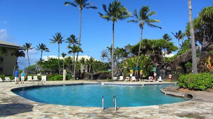 Great Kauai Beach unit