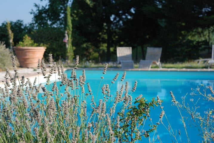 Agriturismo Umbria pool & tennis - Gubbio - Apartment
