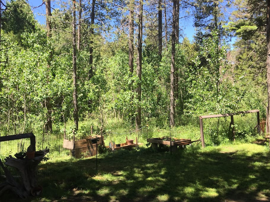 The view off the deck looks out over a beautiful lush Aspen grove and small garden. A great place check out a variety of birds and other wildlife.