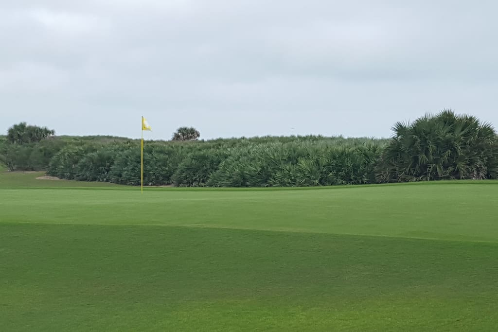 Newly Renovated Ocean Course