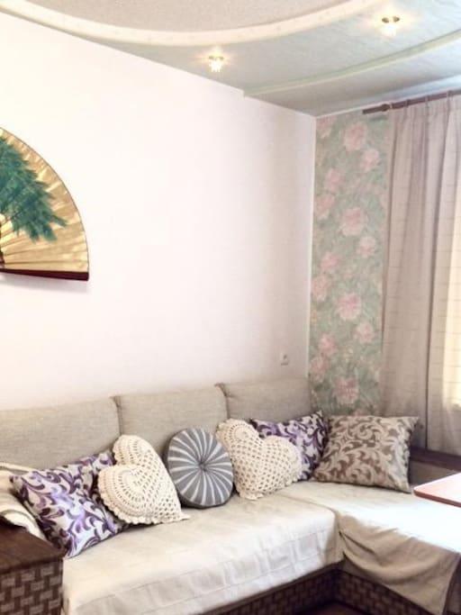 Раскладной диван-кровать размещен в гостиной