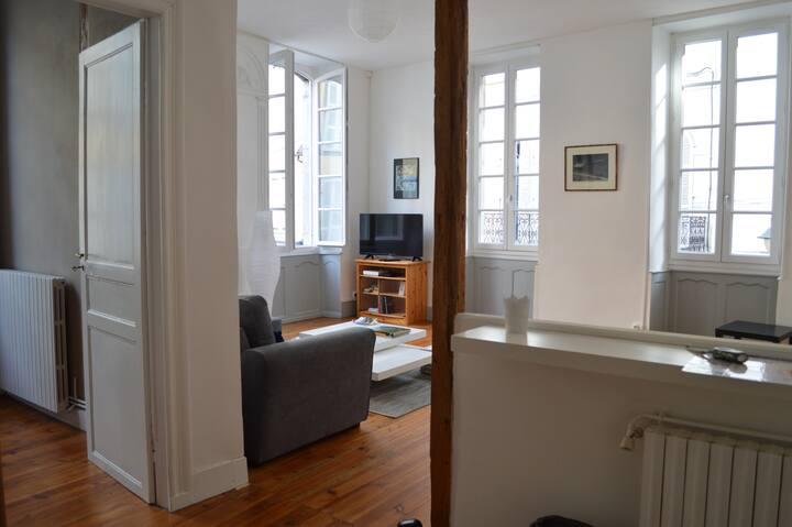 Bel appartement spacieux centre historique