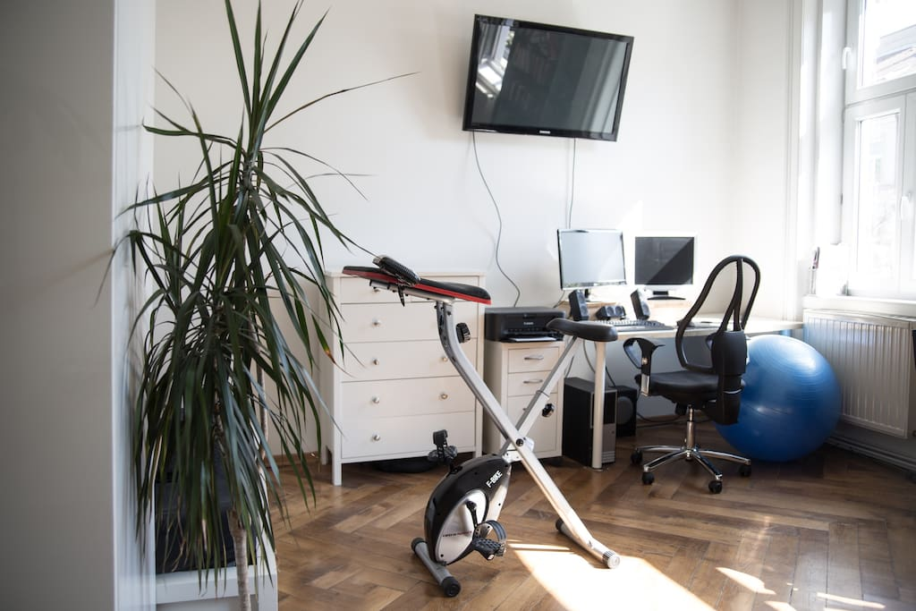 TV, fitness ball and bicycle
