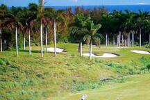 Golfing in Montego Bay