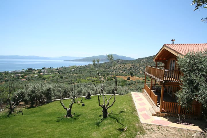 THE OLIVE CHALET - Aidipsos