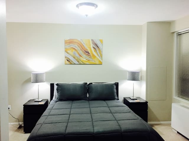 LUXURY 1 Bedroom in Central West End/Forest Park! - St. Louis - Wohnung