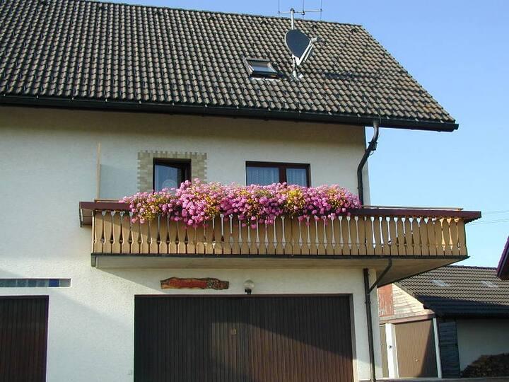 Haus Gisela Berger, (Dachsberg), Ferienwohnung Typ B 55qm, 1 Schlafzimmer, max. 2 Erwachsene + 1 Kind