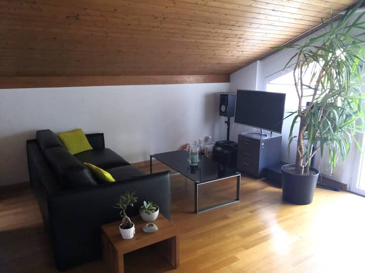 Cozy chalet-like apartment close to Basel