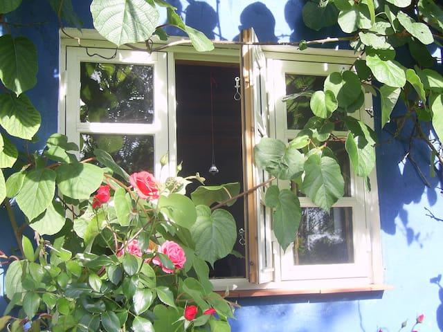 Das schönste Ferienhaus auf Rügen - Garz/Rügen - House
