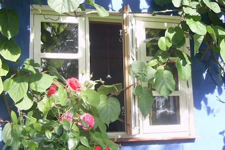 Das schönste Ferienhaus auf Rügen - Garz/Rügen