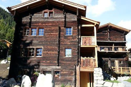 Grand appartement ensoleillé au rez - Reckingen - Chalet