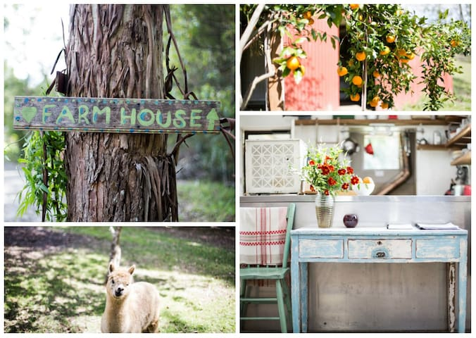 Bellingen Vintage Farmstay: WeilHouse Living