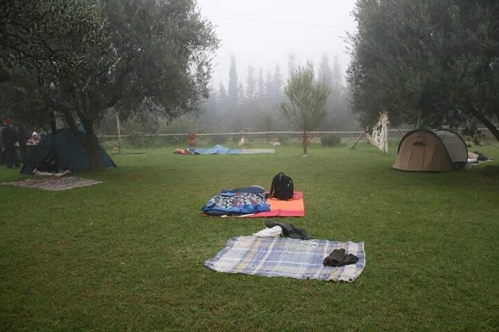 Quiet camping site on eco-farm - Mornag  - Tenda de campanya