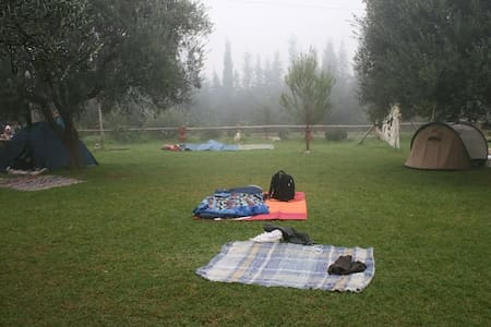 Quiet camping site on eco-farm - Zelt