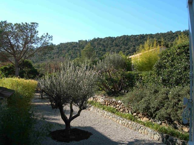 vue jardin depuis chambre