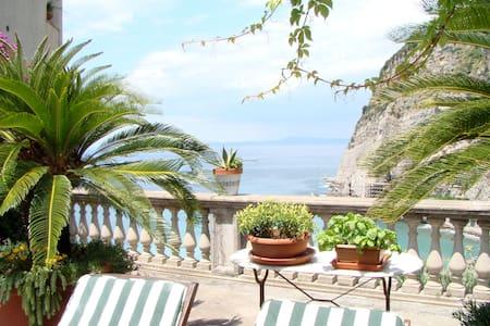 Astonish apartment with terrace  - meta