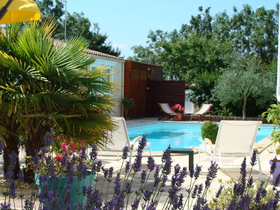 Chambre dhote ind pendt8km la rochelle vue piscine for Chambre hote la rochelle