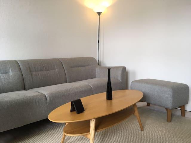 Center Apartman in Horsens