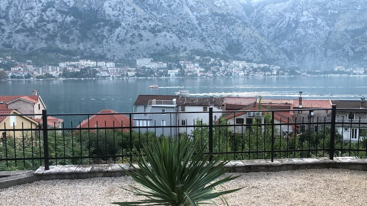 The best of Kotor View
