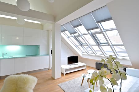 DESIGNER LOFT AT WENCESLAS SQUARE 2 - Praga - Apartament