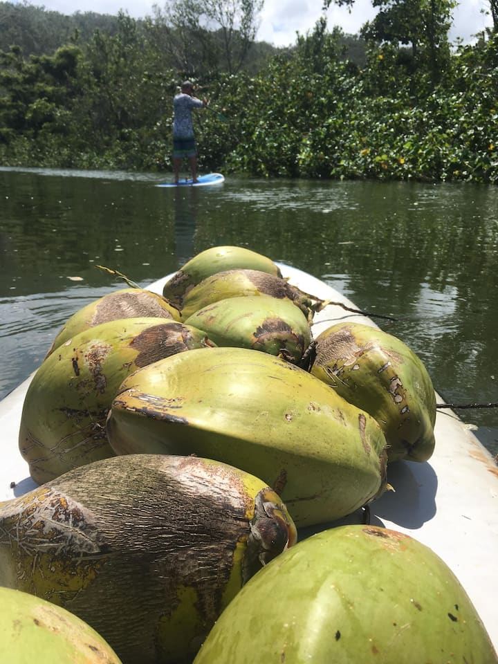 Fresh cocos are a refreshing drink!