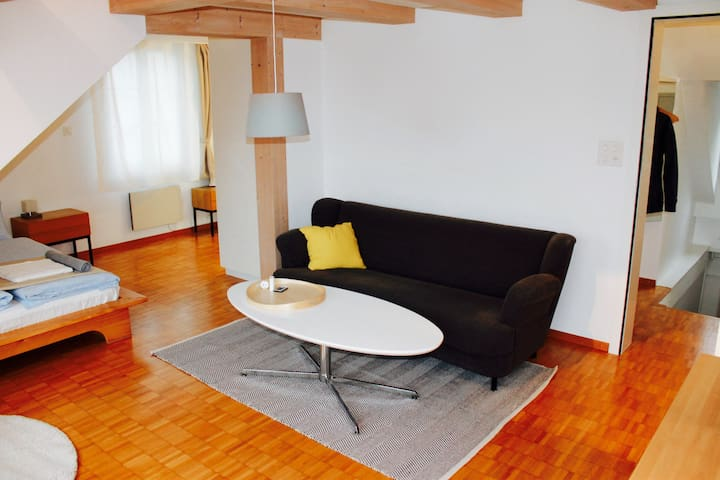 The beautiful Apartment Samuel Uni/Olma - Sankt Gallen - 公寓