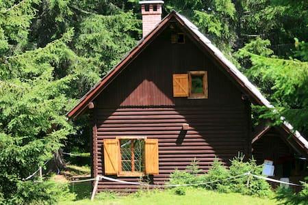 Remote Cabin in forest, above Bled - Goreljek - Bled,