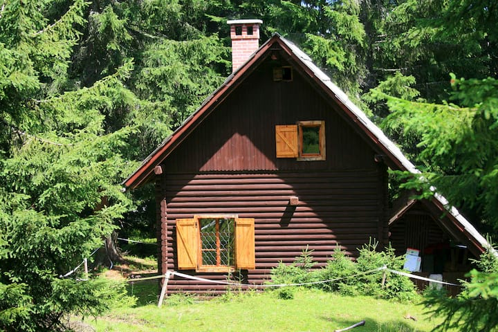 Remote Cabin in forest, above Bled