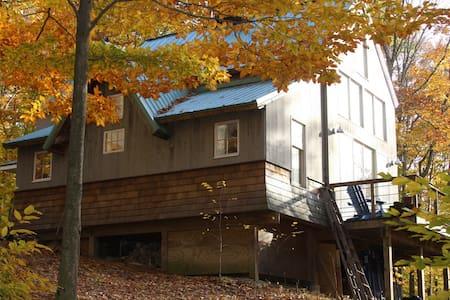 The Tree House - Killingworth