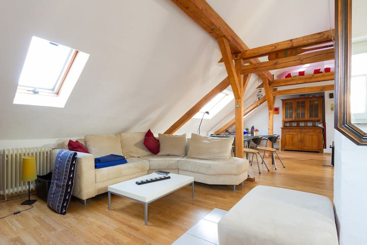 beautiful loft apartment - Celle - Lägenhet
