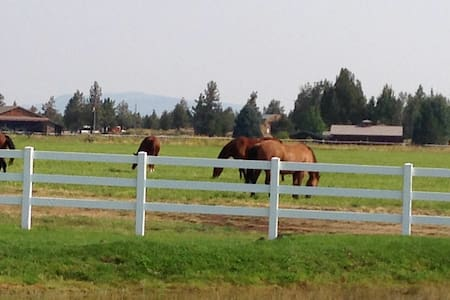 """""""Horse Ranch with Guest Quarters"""""""