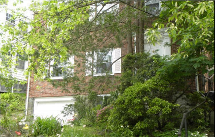 Boston/Brookline, 5 bed brick house for the summer - Brookline - House