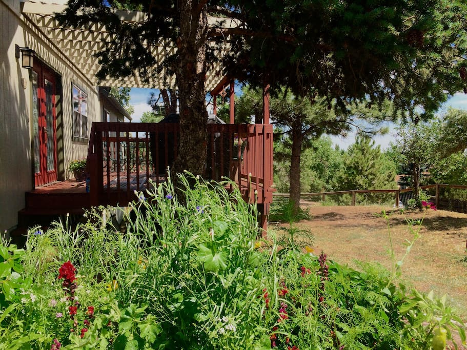 Flower gardens, the deck shaded by pines, and the large fenced yard (shown here) make it the perfect place to relax.